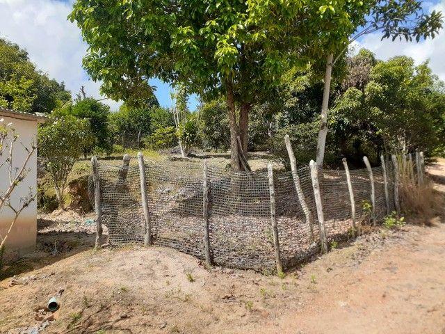 Vendo esta casa localizada na usina nossa senhora do Carmo  - Foto 4