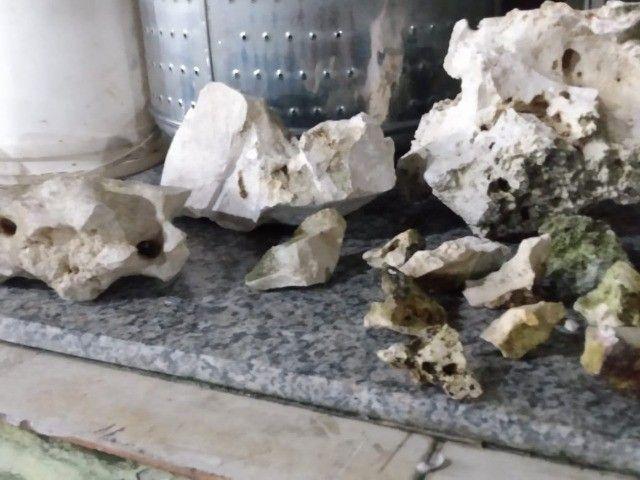 rochas sanzibar para aquario de água doce ou salgada