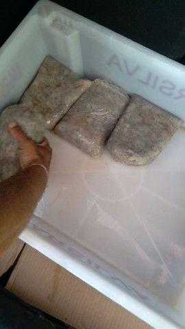camarão limpo fresco e congelado