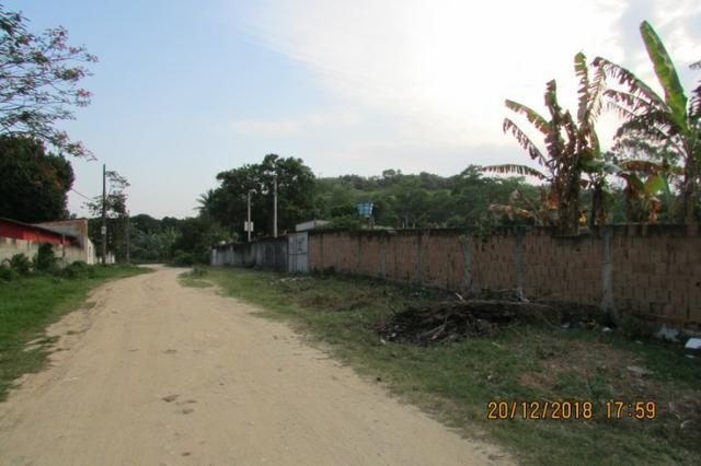 Chácara plana e murada, 2 casas, condução a 150 metros, favor ler o texto!! - Foto 20