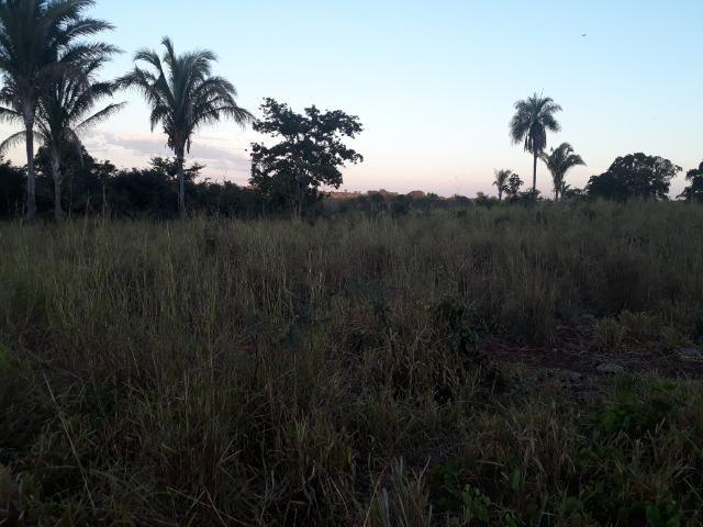 Chácara muito boa a 9 km de Acorizal - Foto 14