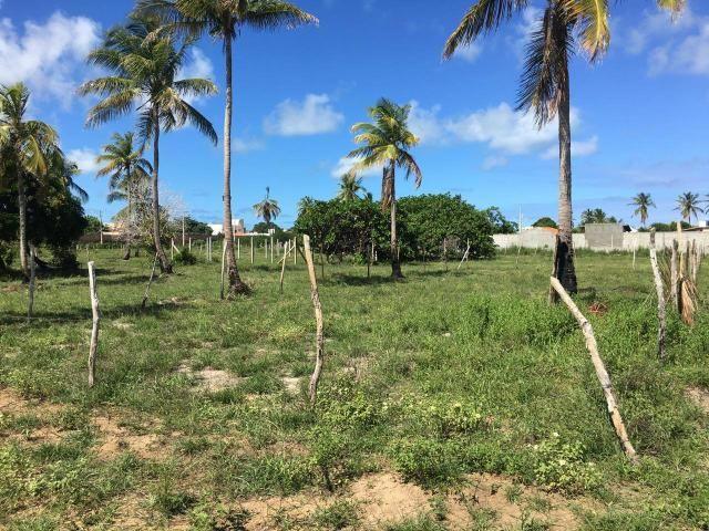 Terreno de 360m2 por R$90mil direto com o proprietário *15 - Foto 2