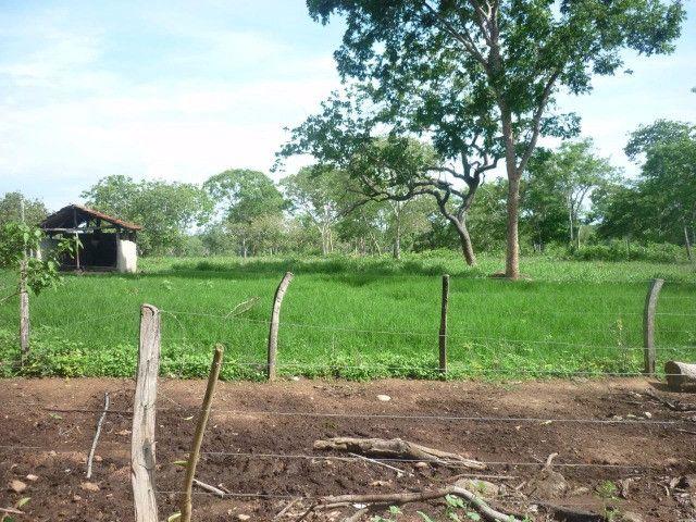 108 alqueires em Amaralina, próximo a Mara Rosa GO, plana e boa de água!! - Foto 12