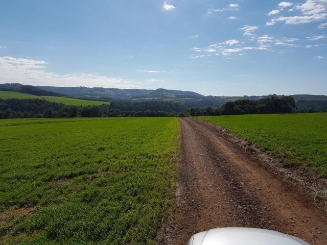 8345 | Sítio à venda em Rural, Santa Maria - Foto 7