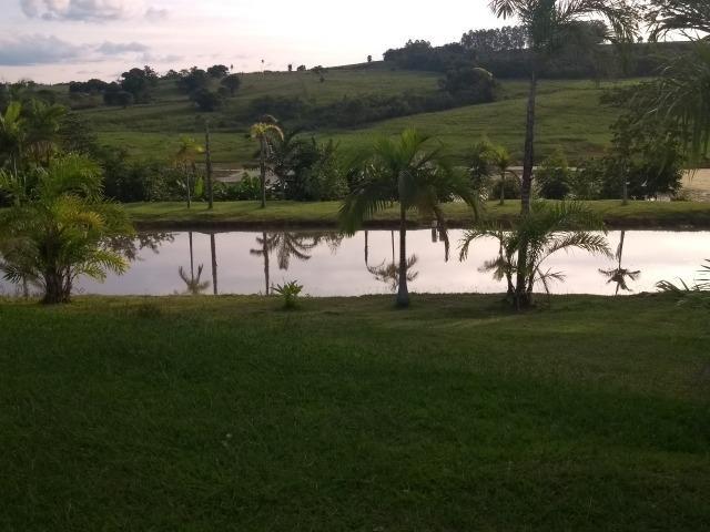 Vende-se Chácara a Beira da Represa em Carlópolis PR - Foto 20