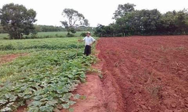 470 Alqs 70% Permuta Planta Todinha Barro Vermelho Ponte Alta TO - Foto 6