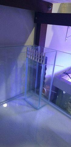 Bateria de aquários  - Foto 3