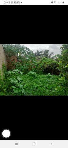 Vendo terreno em Cajueiro, são João da Barra  - Foto 5