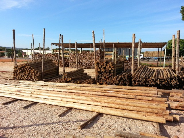 madeira de eucalipto para telhado e galpão!