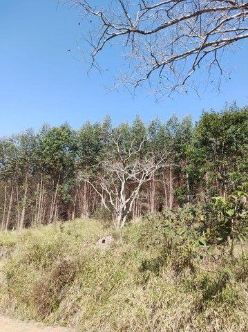 u= mude de vida para o campo e tenha mais paz  - Foto 3