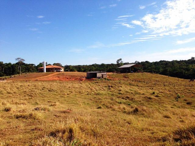 Fazenda 873 ha S.J. Rio Claro MT - Foto 10