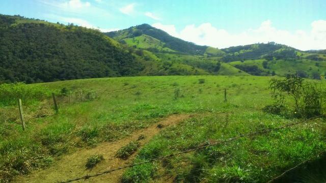 Fazenda em Cachoeira de Minas - Foto 13
