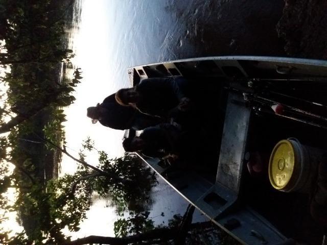 Pesqueiro no pantanal estudo troca - Foto 20