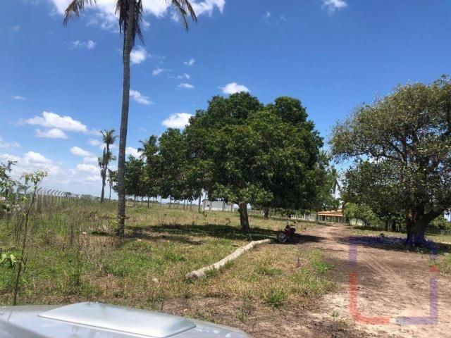 Fazenda com 3 dormitórios à venda, 530000 m² por R$ 1.400.000 - Centro - Curral de Cima/PB - Foto 10