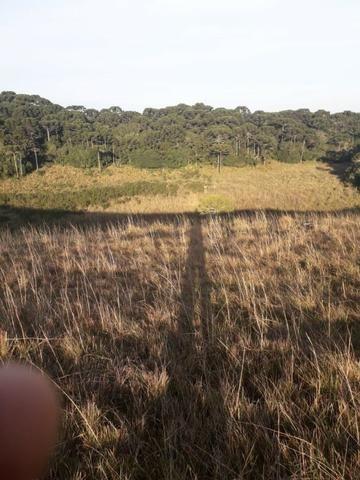 Para você que procura descanso e tranquilidade junto as belezas da serra gaucha - Foto 4