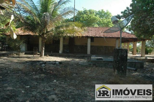Sítio / Chácara para Venda em Barras, 3 dormitórios, 1 suíte, 2 banheiros, 3 vagas - Foto 7