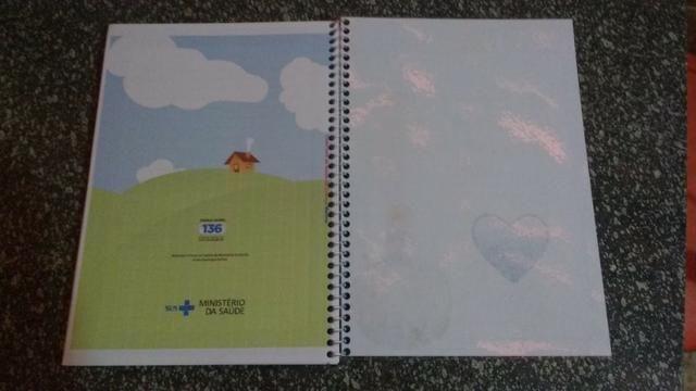 Caderneta de Vacinação Personalizada com lindo chaveiro de brinde