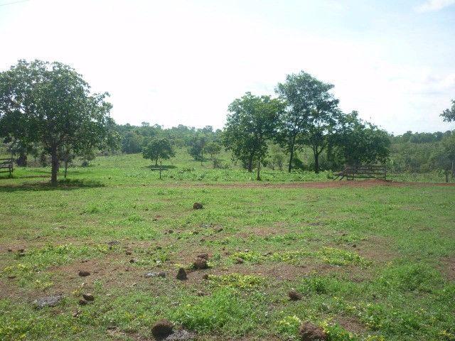 108 alqueires em Amaralina, próximo a Mara Rosa GO, plana e boa de água!! - Foto 8