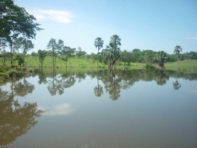 108 alqueires em Amaralina, próximo a Mara Rosa GO, plana e boa de água!! - Foto 3