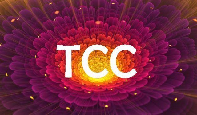 Formatação de TCC (Pagamento seguro e parcelado)