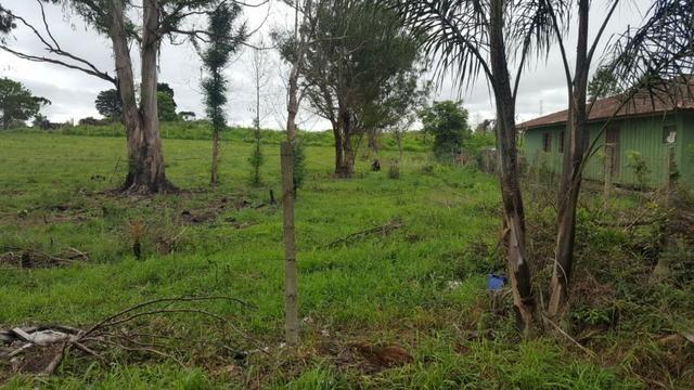 Chácara/bem localizada, de frente para Rodovia BR277 só R$3.499.000,00 - Foto 17