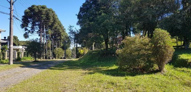 Terreno em Condomínio Fechado Monte Berico / Caxias do Sul - Foto 2
