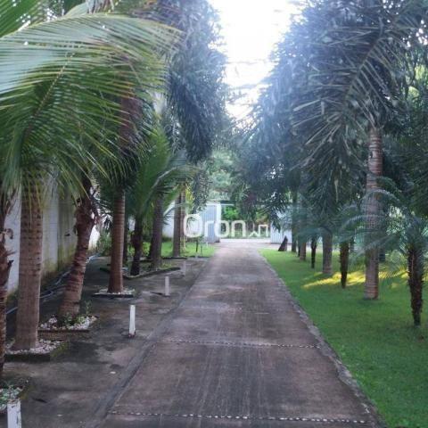 Chácara com 1 dormitório à venda, 2600 m² por R$ 1.200.000,00 - Jardim Marques de Abreu -  - Foto 8