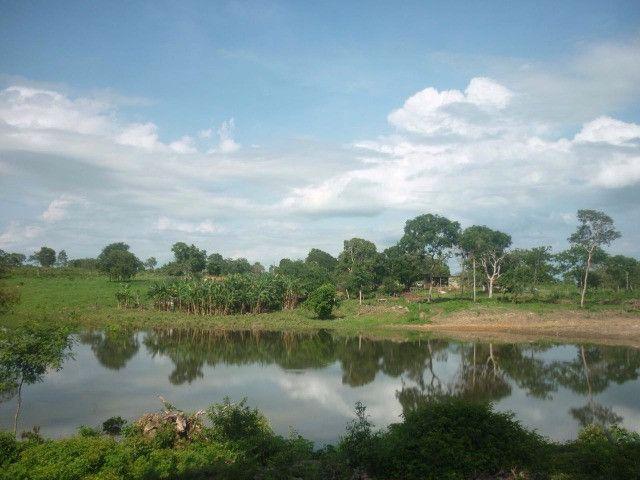108 alqueires em Amaralina, próximo a Mara Rosa GO, plana e boa de água!! - Foto 4