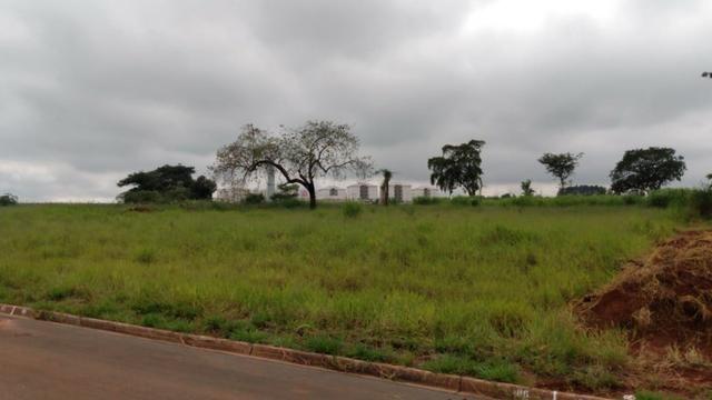 2 terrenos em Cosmópolis, oportunidade de investimento. (TE0050) - Foto 5