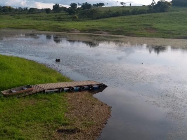 Vende-se Chácara a Beira da Represa em Carlópolis PR - Foto 5