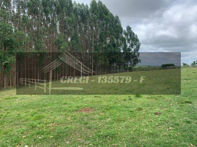 Sítio com 2 alqueires em Itaberá, ótima estrutura - Foto 5