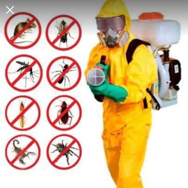 Dedetização sanitização contra Corona vírus