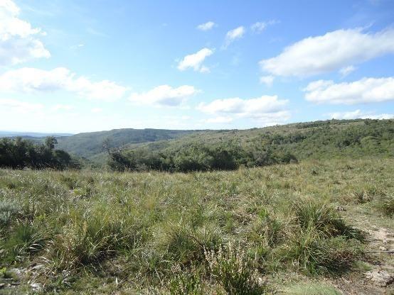 Área 128 hectares