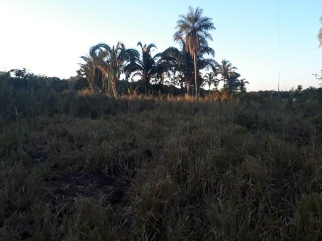 Chácara muito boa a 9 km de Acorizal - Foto 4