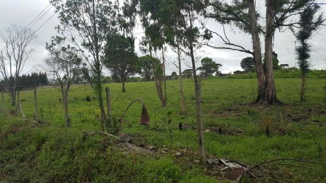 Chácara/bem localizada, de frente para Rodovia BR277 só R$3.499.000,00 - Foto 14