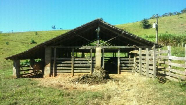 Fazenda em Cachoeira de Minas - Foto 8