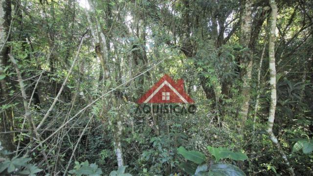 Terreno à venda, 1066 m² por r$ 530.000,00 - cidade industrial - curitiba/pr - Foto 10