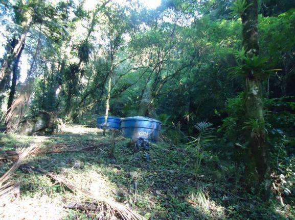 Chácara à venda em Pirabeiraba, Joinville cod:18298N - Foto 14