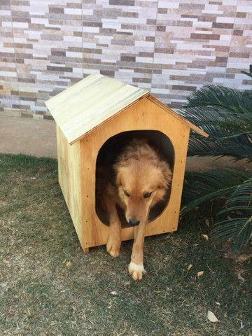 Casa pra cachorro ou gato (TAM. 2) - Foto 5