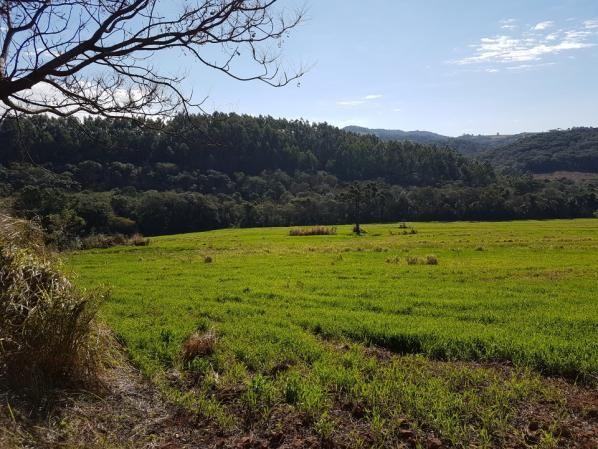 8345 | Sítio à venda em Rural, Santa Maria - Foto 8