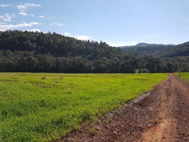 8345 | Sítio à venda em Rural, Santa Maria - Foto 10