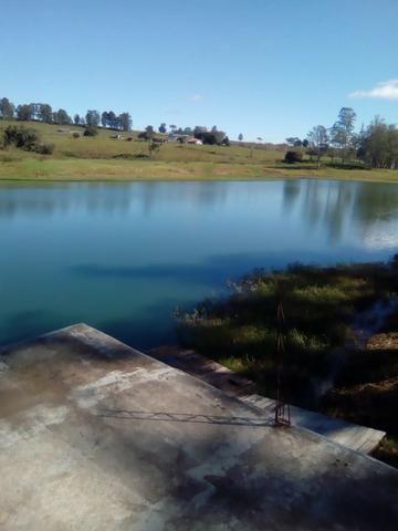 Vende-se Chácara a Beira da Represa em Carlópolis PR - Foto 9