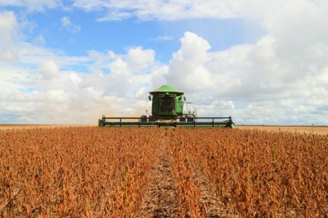Procuro área para soja até 300 hectares