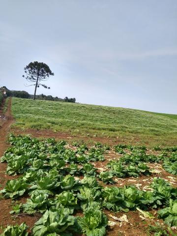 Chácara ao lado da fazenda Rio grande Marcos telefone * - Foto 2