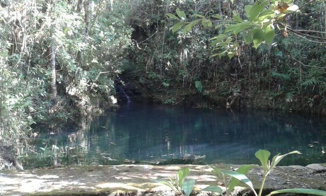 Chácara com área de 4000m², 14 km de Alto Paraíso de Goiás - Foto 10