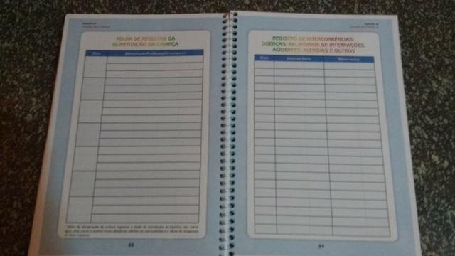 Caderneta de Vacinação Personalizada com lindo chaveiro de brinde - Foto 2