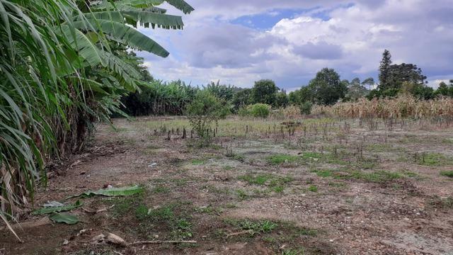 Terreno 2.400m2 - Vila Nova Prudentópólis - Foto 2