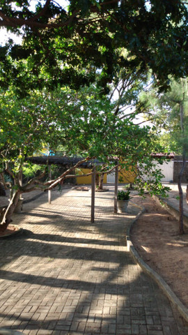 Vendo Casa Ampla no Pium - Foto 14