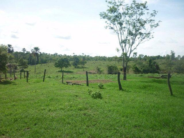 108 alqueires em Amaralina, próximo a Mara Rosa GO, plana e boa de água!! - Foto 7