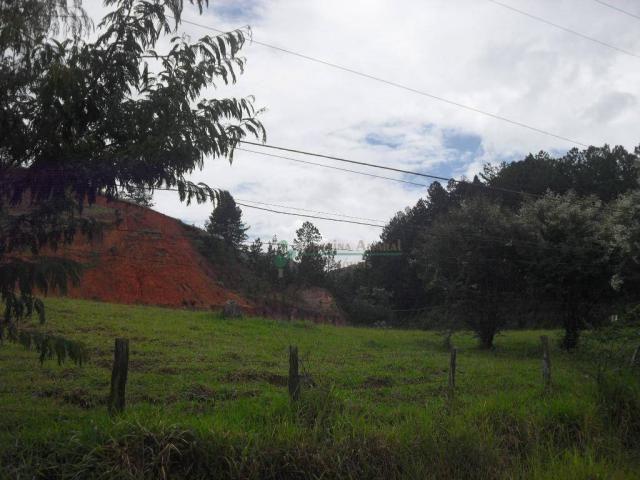 Área corporativa à venda, Vargem Grande, Teresópolis. - Foto 12
